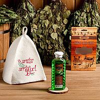 Подарочный набор 'Добропаровъ' шапка 'В здоровом теле здоровый дух' и шампунь