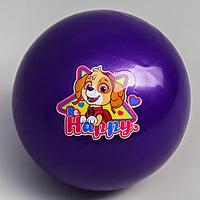Мяч детский Paw Patrol 'Happy', 16 см, 50 гр, цвета МИКС (комплект из 4 шт.)