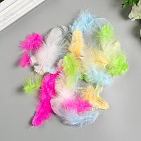Перья декоративные 'Карнавальные', 5-8 см (набор 24 шт) 6 цветов, пастель, ассорти