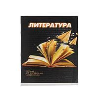 Тетрадь предметная 3D, 48 листов в линейку 'Литература', обложка мелованный картон, блок 2, белизна 75 (серые