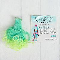 Кукольные волосы-тресс 'Завитки' длина волос 15 см, ширина 100 см, LSA029