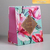 Пакет ламинированный с пластиковым окном Happy smile, 32,5 x 26,5 x 13,5 см (комплект из 6 шт.)