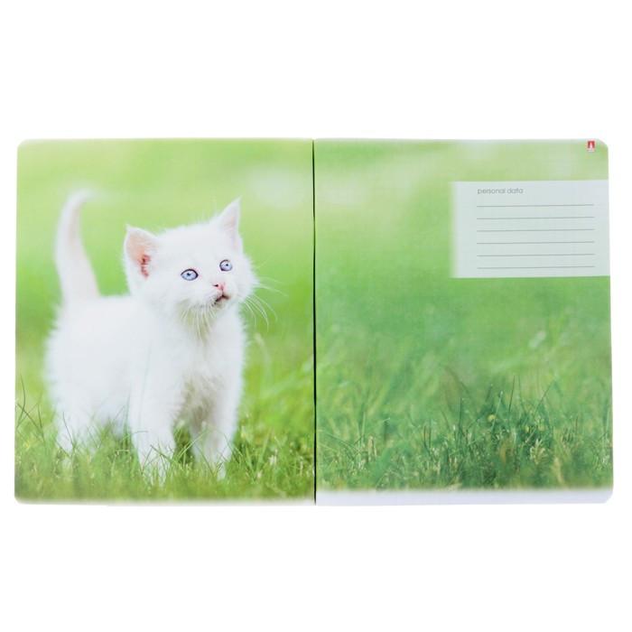 Тетрадь 48 листов в клетку 'Котята и цветы', обложка мелованный картон, гибридный лак, МИКС (комплект из 5 - фото 2
