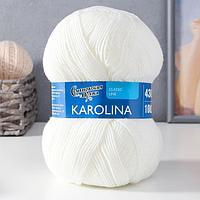 Пряжа Karolina (Каролина) 100 акрил 438м/100гр белый (179) (комплект из 3 шт.)