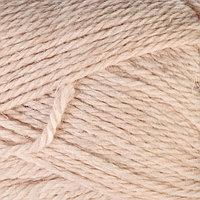 Пряжа 'Бамбино' 35 шерсть меринос, 65 акрил 150м/50гр (188 топл. молоко)