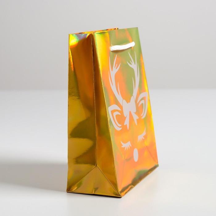 Пакет голографический вертикальный 'Новый год', S 12 x 15 x 5.5 см (комплект из 12 шт.) - фото 2
