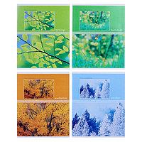 Тетрадь 48 листов в клетку Seasons, обложка мелованный картон, МИКС (комплект из 5 шт.)