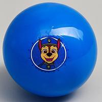 Мяч детский Paw Patrol 'Гончик', 16 см, 50 гр, цвета МИКС (комплект из 4 шт.)