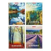 Тетрадь 96 листов клетка 'Красивые виды', обложка картон хром-эрзац, белизна блока 82-86 (комплект из 2 шт.)