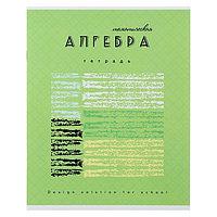 Тетрадь предметная 'Арт', 40 листов в клетку 'Алгебра' со справочным материалом, обложка мелованный картон,