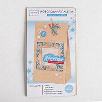 Пакет подарочный 'Счастья и волшебства', набор для создания, 15.5 x 28.5 см