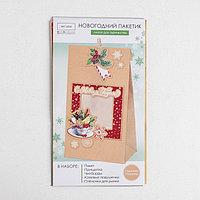 Пакет подарочный 'С Новым годом', набор для создания, 15.5 x 28.5 см