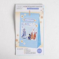 Пакет подарочный 'Снегурочка и Дед Мороз', набор для создания, 15.5 x 28.5 см
