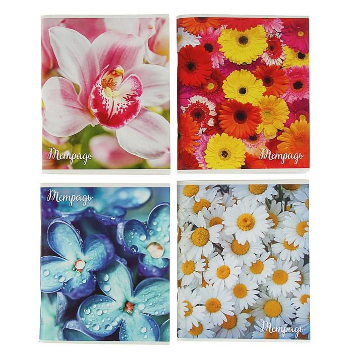 Тетрадь 96 листов в клетку 'Цветы', обложка мелованный картон, блок 2 белизна 75, МИКС (комплект из 4 шт.) - фото 1