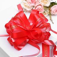 Бант-шар 6, цвет красный (комплект из 10 шт.)