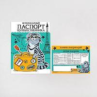 Обложка для ветеринарного паспорта кошки 'Паспорт путешественника' и памятка