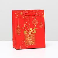 Пакет ламинированный 'Подарочный', 11,5 x 14,5 x 6 см (комплект из 12 шт.)