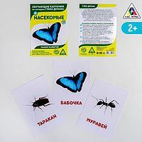 Обучающие карточки по методике Г. Домана 'Насекомые', 12 карт, А6