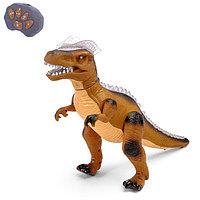 Динозавр радиоуправляемый T-Rex, световые и звуковые эффекты, работает от батареек, цвет коричневый