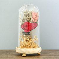 Ночник 'Колба с розой в букете' LED 3ААА МИКС 19х9,5х9,5 см