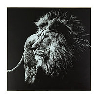 Картина 'Чёрно-белый лев' 50*50 см