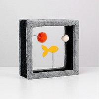 Игрушка для кошек с 3 дразнилками 'Куб', 35 х 35 х 15 см, микс цветов