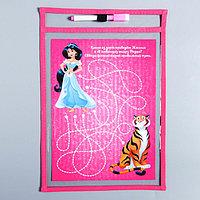 Развивающая игра 'Пиши-стирай' в папке с карточками и маркером, Принцессы