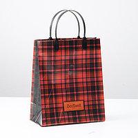 Пакет 'Шотландия', мягкий пластик, 23 х 27 см, 150 мкм (комплект из 10 шт.)