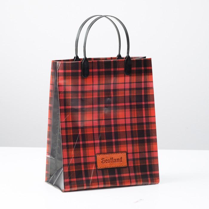 Пакет 'Шотландия', мягкий пластик, 23 х 27 см, 150 мкм (комплект из 10 шт.) - фото 1