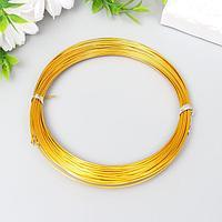 Проволока для рукоделия 'Астра' 1 мм, 10 м, золото
