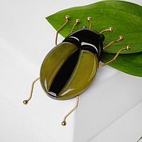 Брошь пластик 'Жук', цвет чёрно-зелёный в золоте