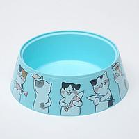 Миска 'Мур-мяу' для кошек 0,3 л, 14,5 x 14,5 x 4 см, голубая