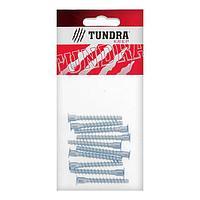 Винт конфирмат TUNDRA krep, 6.3х50 мм, стальной, оцинкованный, в упаковке 10 шт.