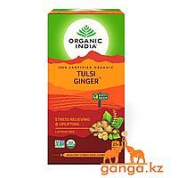 Чай Тулси с Имбирем (Tulsi ginger ORGANIC INDIA), 25 пак