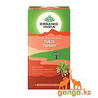 Чай Тулси для улучшения пищеварения (Tulsi tummy ORGANIC INDIA), 25 пакетиков