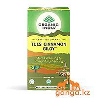 Чай Тулси с Корицей и Гудучи для укрепления иммунитета (Tulsi cinamom giloy ORGANIC INDIA), 25 пакетиков