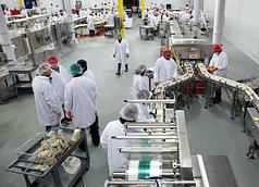 Промышленное производственное оборудование - производства и цеха под ключ