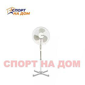 Вентилятор напольный для дома Masima