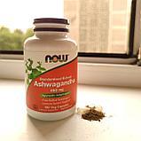 Ашваганда Now Foods 450 мг., стандартизованный экстракт ашвагандхи, фото 2