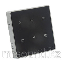 Сенсорная панель управления аудиосистемой