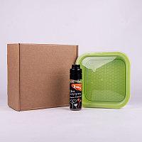 Подарочный набор для проращивания микрозелени: проращиватель, семена дайкона, Зеленый, -, 33817 дайкон