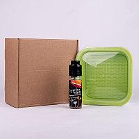 Подарочный набор для проращивания микрозелени: проращиватель, семена микс, Зеленый, -, 33817 микс