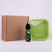 Подарочный набор для проращивания микрозелени: проращиватель, семена мицуны, Зеленый, -, 33817 мицуна