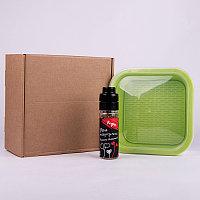 Подарочный набор для проращивания микрозелени: проращиватель, семена редиса, Зеленый, -, 33817 редис