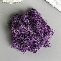 """Мох искусственный """"Фиолетовый"""" 10 гр"""
