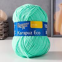 Пряжа Karapuz Eco (КарапузЭко) 90 акрил, 10 капрон 125м/50гр весна (899)
