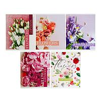 Тетрадь 48 листов в клетку 'Флористика', обложка мелованный картон, блок 2, белизна 75 (серые листы), МИКС