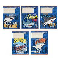Тетрадь 12 листов в линейку 'Атака акул', обложка мелованный картон, блок офсет, МИКС (комплект из 25 шт.)