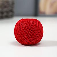 Нитки вязальные 'Кружевница' 195м/20гр 100 мерсеризованный хлопок цвет 0904 (комплект из 10 шт.)