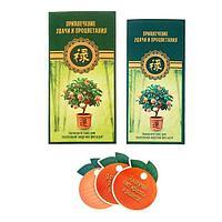 Конверт фэн-шуй «Ритуал по привлечению удачи и процветания фэн-шуй»
